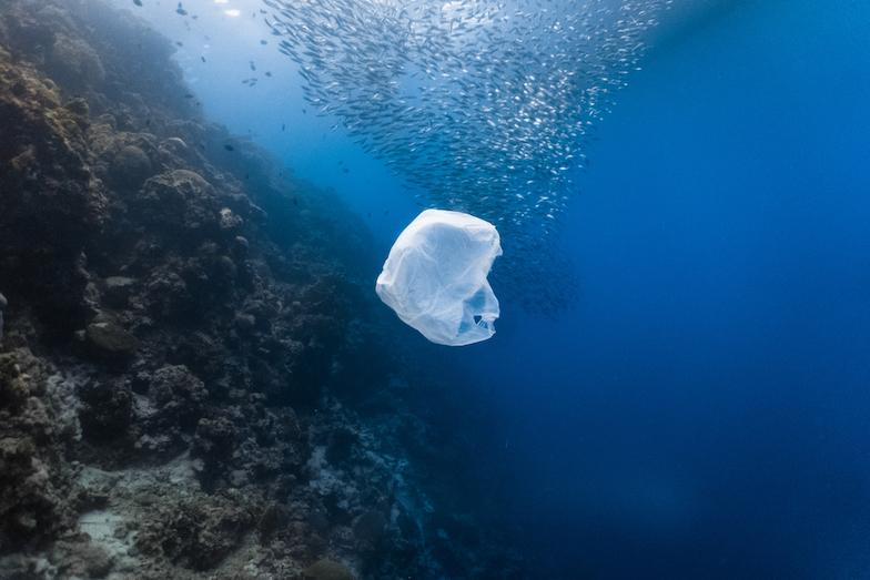 Proč nejsou biologicky rozložitelné plasty řešením plastové krize